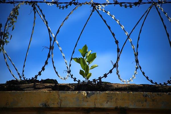 В Голландии массово закрывают тюрьмы — не нужны, говорят